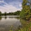 Романтика 2014: Вид с дальнего берега озера